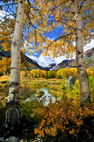 Portrait View of Fall in the High Sierra Nevada